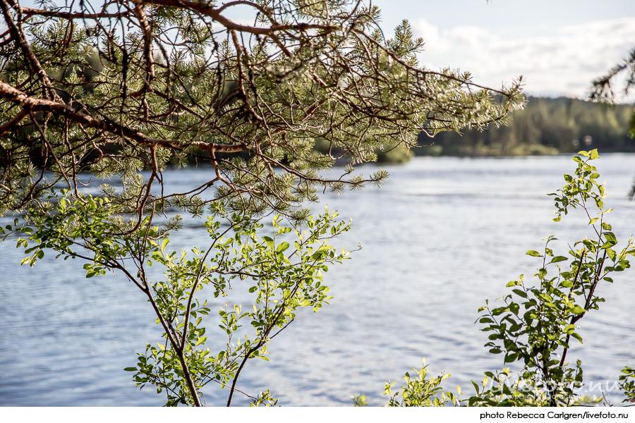 160630_jukkasjarvi_Photo_Rebecca-Carlgren_livefoto.nu_-18